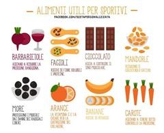 Alimenti vegetariani e vegani2