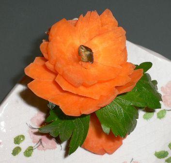 Carota fiore giapponese 1.jpg