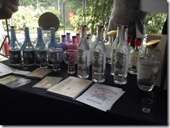 Distillati The Gin Day 2014