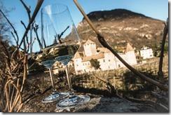 Eventi Castel Mareccio - Mostra Vini Bolzano 2015©Alex Moling