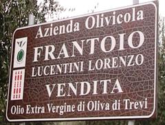 Frantoio LUCENTINI