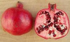 Frutta Melograno