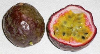 Frutto della Passione Maracuja