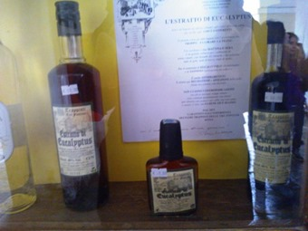Liquori d'erbe4