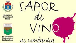 Logo Sapor di vino Grumello del monte