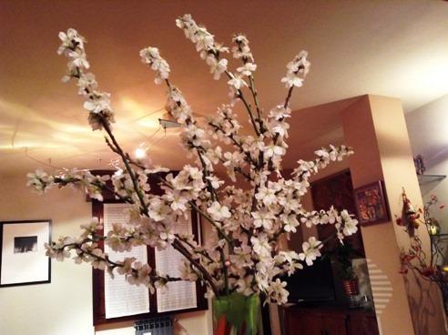 Mandorlo in fiore2 21-02-2014