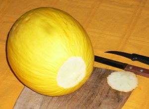 Presepe in Melone 001.jpg