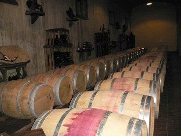 Vini Montesissa 1.jpg