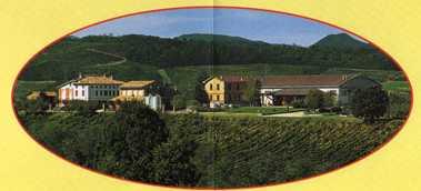 Vini Montesissa colli piacentini 0.jpg