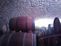 Vino Botti in Cantina Amarone
