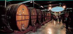 botti grosse interno per vermouth francese.jpg