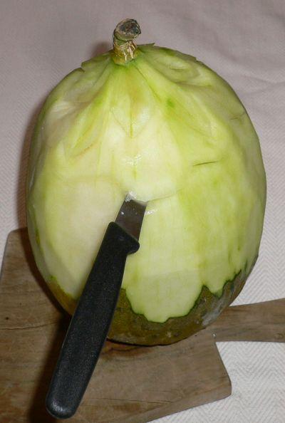 cesto melone 15-09-06 003.jpg