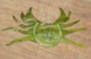 cesto melone 15-09-06 012.jpg