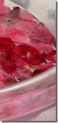Decorazione petali di rosa