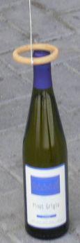 pesca la bottiglia 3.jpg