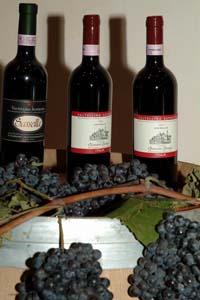 vinivaltellina.jpg