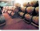 vino Cantele Salento Puglia